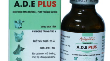 ADE PLUS – NEW PRODUCT (EPISODE 2)
