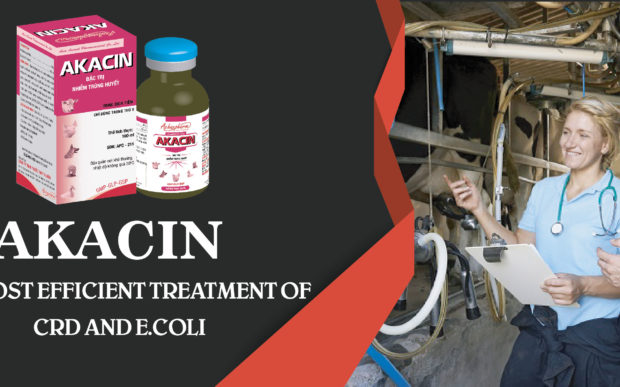 AKACIN-NEW PRODUCT!!! ASIA ANIMAL PHARMACEUTICAL CO-LTD